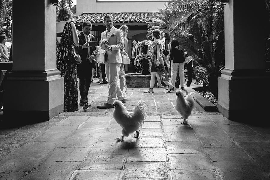 Matatenafotografia Wedding Photographer | Hotel Boutique Casa de Campo 2